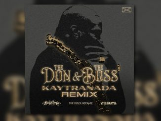 Busta Rhymes The Don & The Boss (Kaytranada Remix) Mp3 Download
